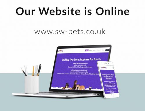 SW PETS Website Design